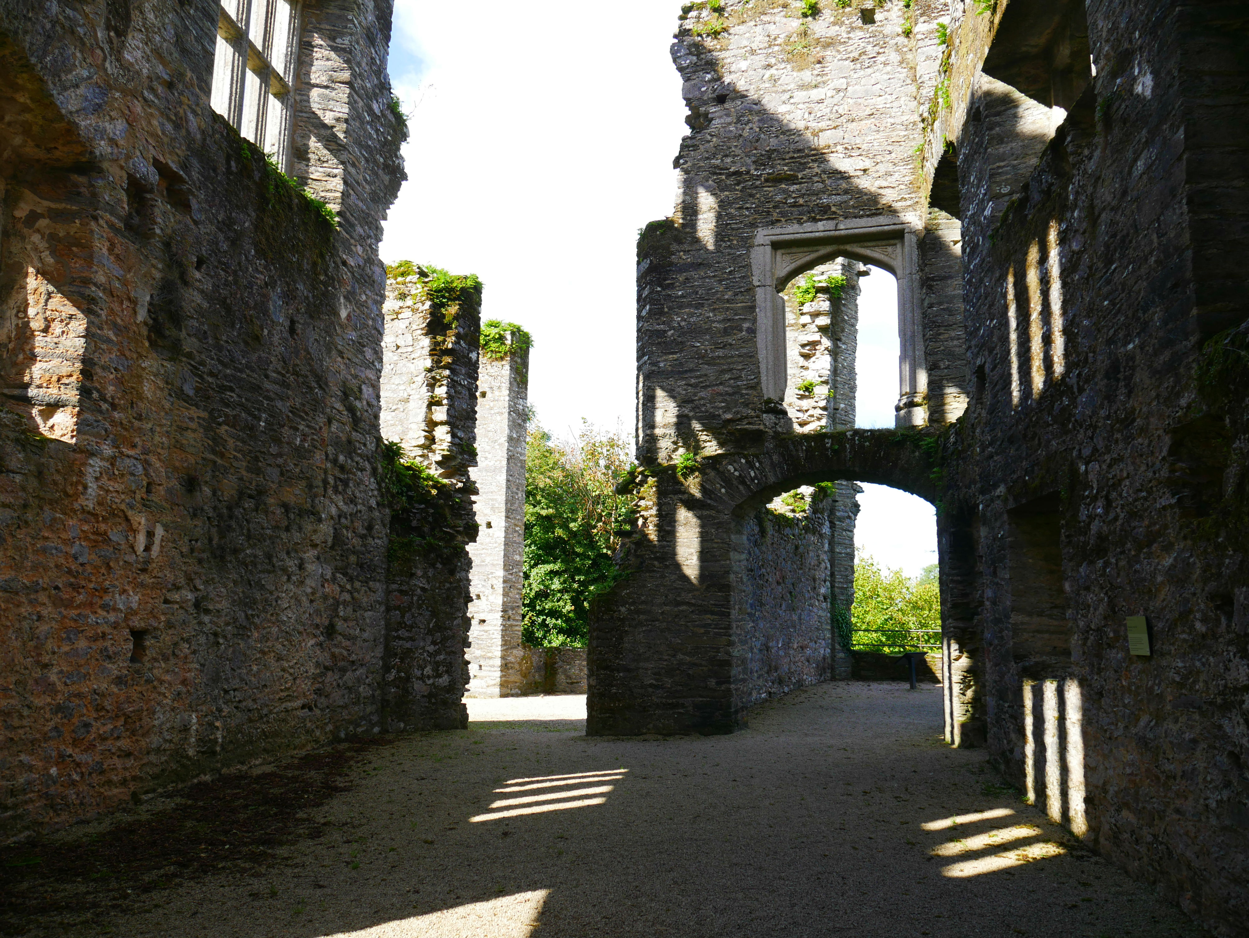 Berry Pomeroy Castle near Torquay - dog friendly visitor attraction