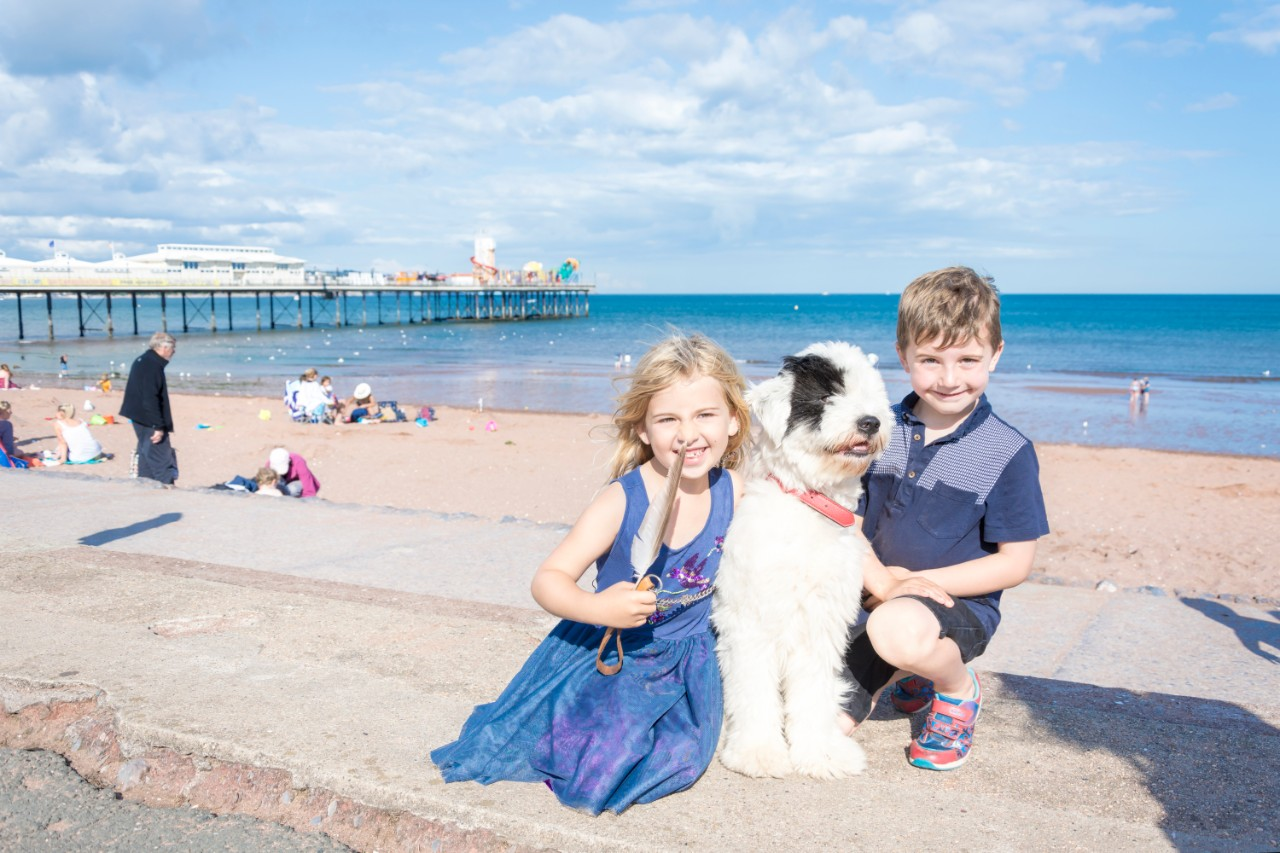 Dog Friendly Holidays in Torquay